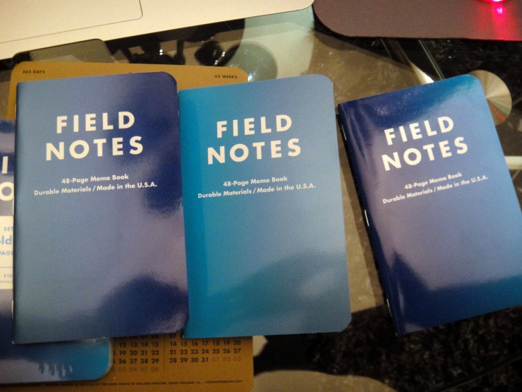 Field Notes Cold Horizon